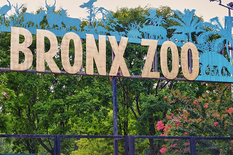 Zoo du Bronx à New York