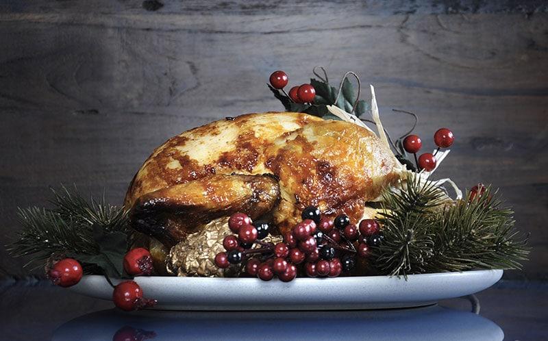 dinde de thanksgiving avec des cranberry