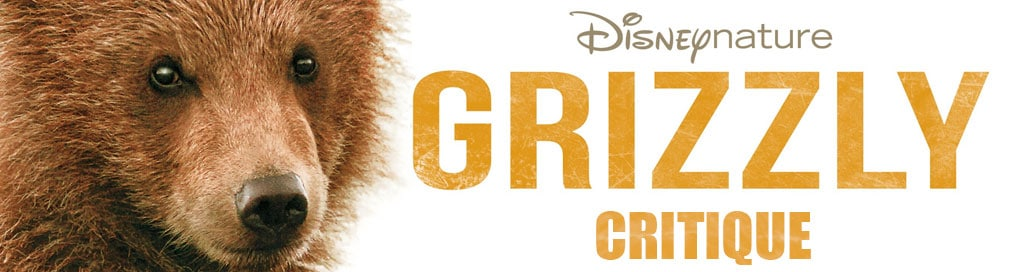 critique du film grizzly disney nature avec photo d'ours