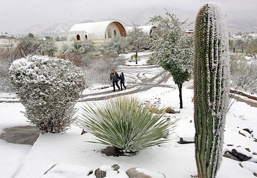 neige dans le desert de l'Arizona avec cactus