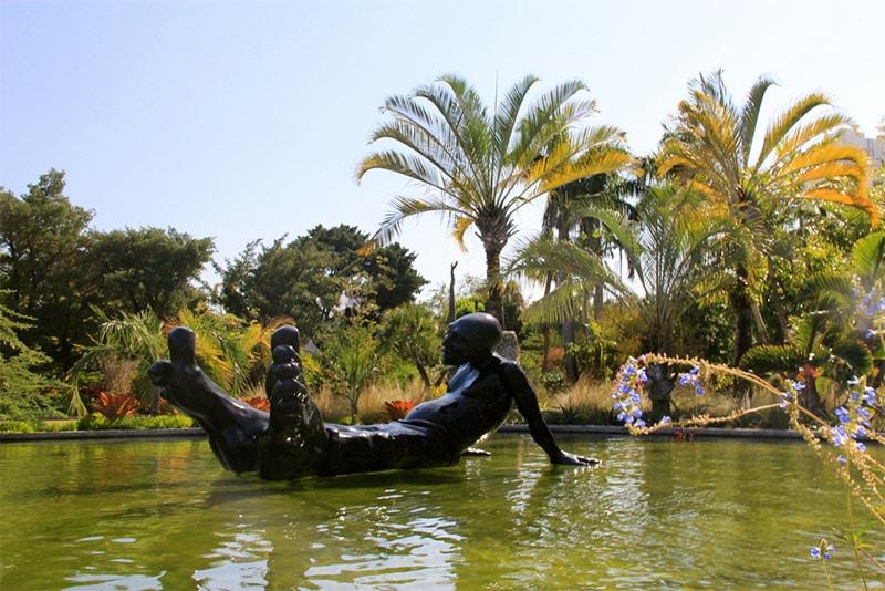 Jardin Botanique de Miami