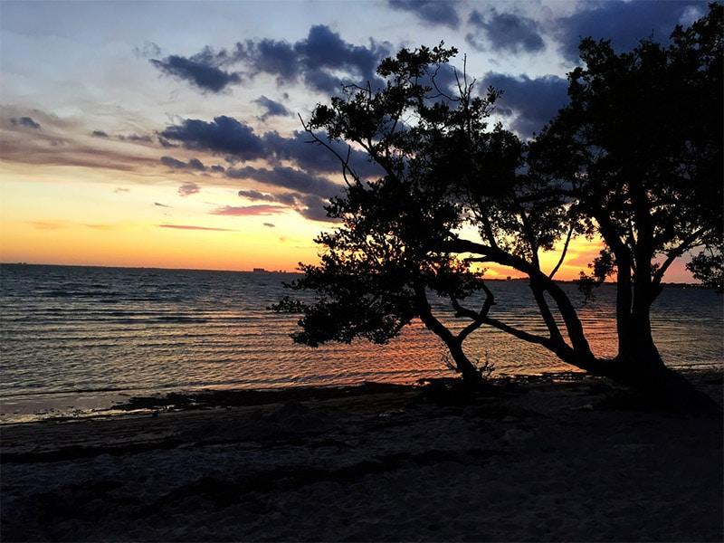 Que faire à Miami ? Visiter Key Biscayne