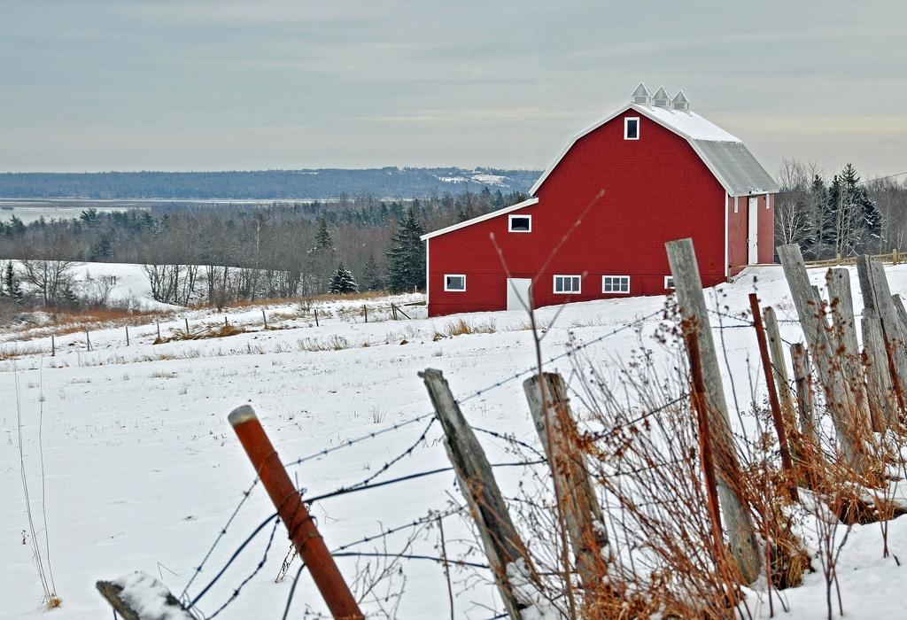Grange Rouge Américaine sous la Neige