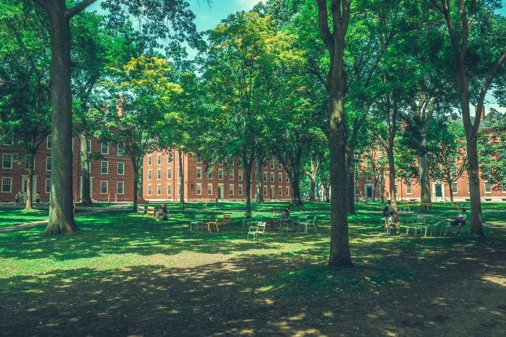 Parc de l'université Harvard