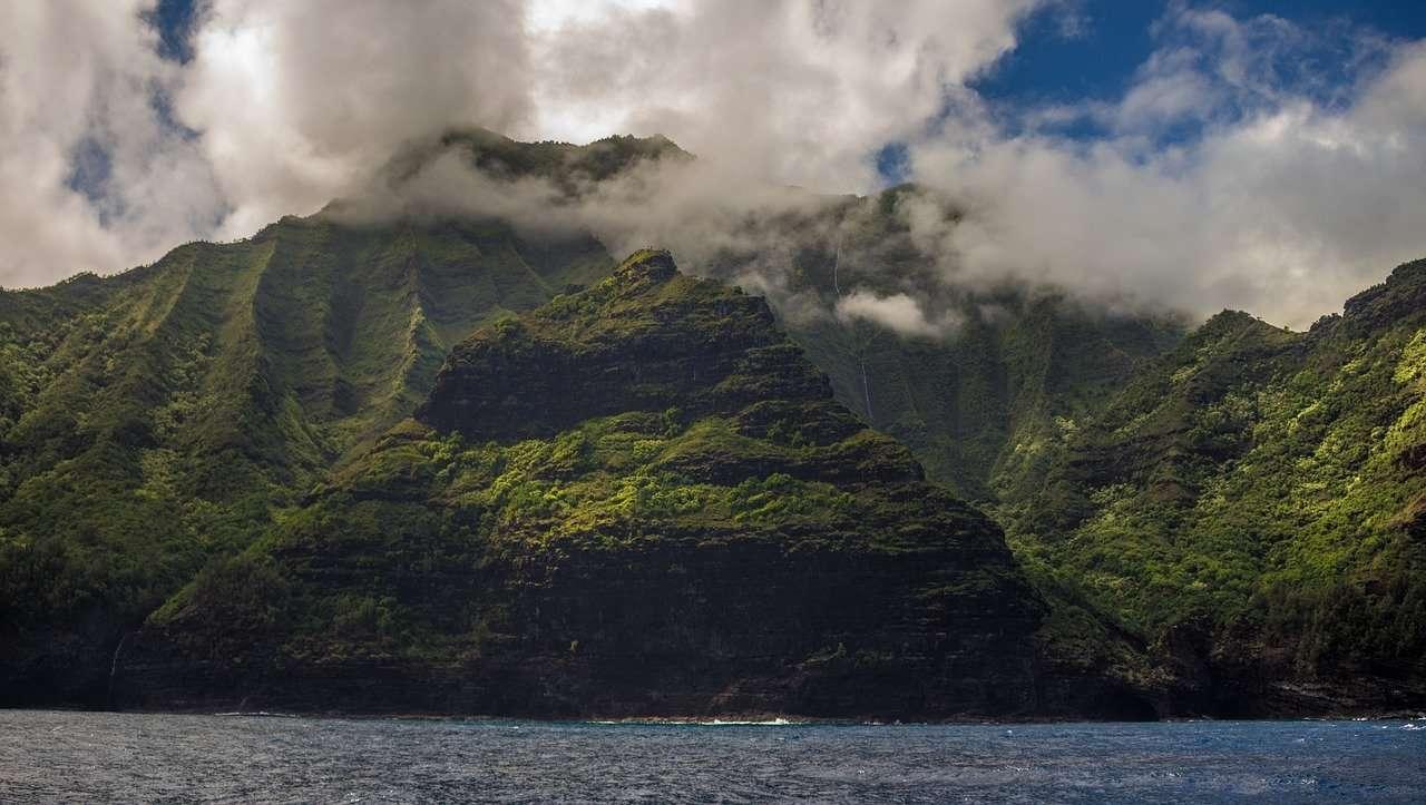Forêt Vierge à Hawaï
